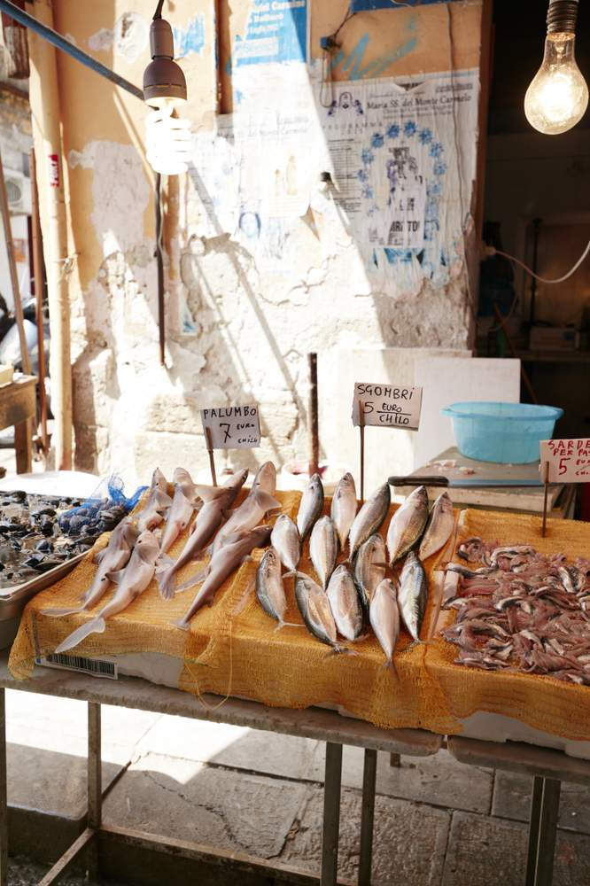 Fish at the Ballaro Market.Photographer: Prue Ruscoe